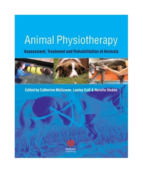 Animal Physiotherapy.