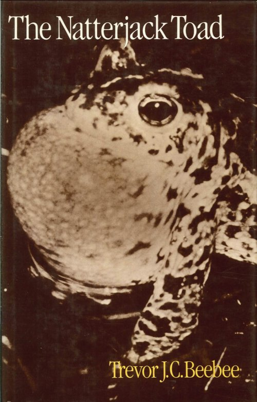 The Natterjack Toad.