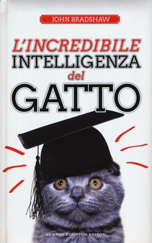 L'incredibile intelligenza del gatto.