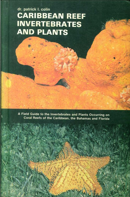 Caribbean Reef Invertebrates and Plants.