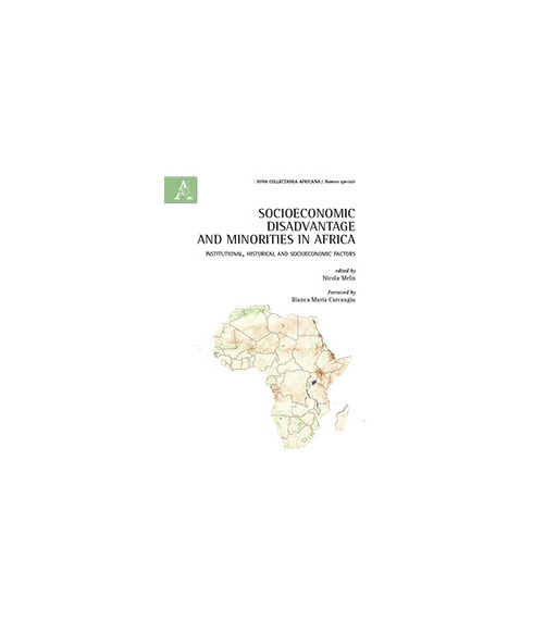 Socioeconomic Disadvantage and Minorities in Africa Institutional, Historical and Socioeconomic factors.