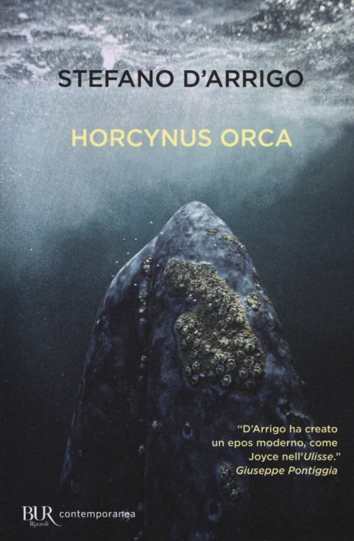Horcynus Orca