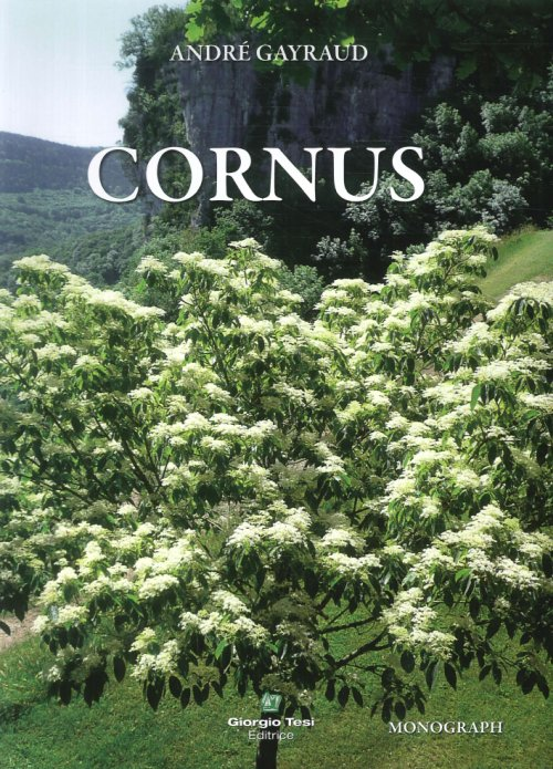 Cornus [German edition].